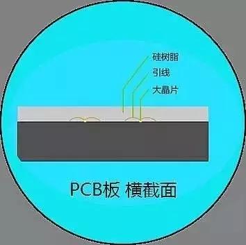 COB5.webp.jpg