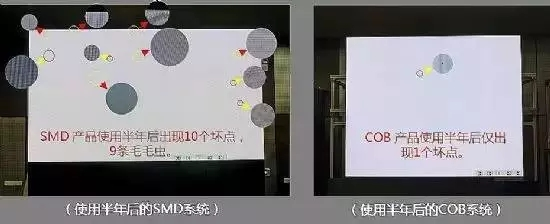 COB6.webp.jpg