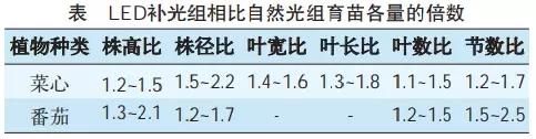 2.2.16.webp.jpg